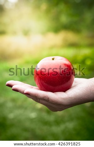 Hand holding a red shiny apple in a grassy field on a sunny day - stock photo