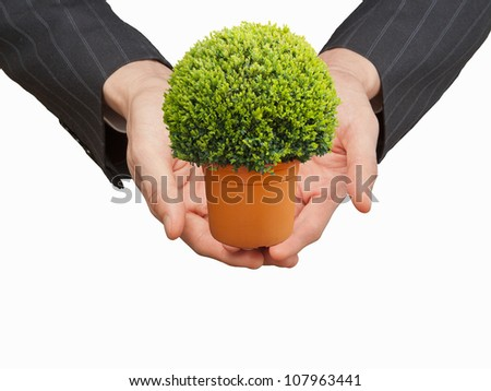 Hand holding a tress in white background