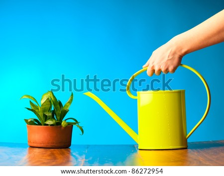 Hand holding a watering can