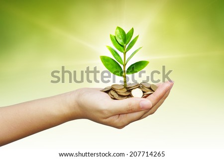 hand holding a young tree growing on coins
