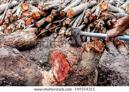 hand holding an ax and firewood  - stock photo