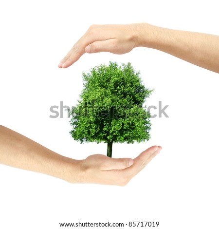 hand holding and protect a tree - stock photo