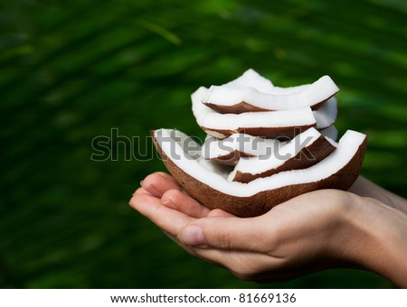 Hand holding coconut. SPA collection. - stock photo