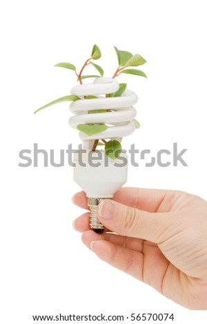 Hand holding compact spiral-shaped fluorescent lamp in hand - stock photo