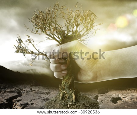 hand holding dry tree in front of a catastrophic background - stock photo