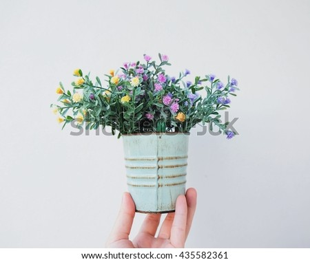 Hand holding flower plant pot for decorated - stock photo