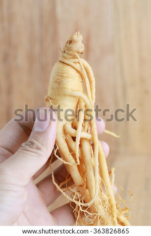Hand holding ginseng root on wood background. - stock photo