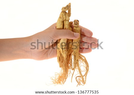 Hand Holding Ginseng Roots - stock photo