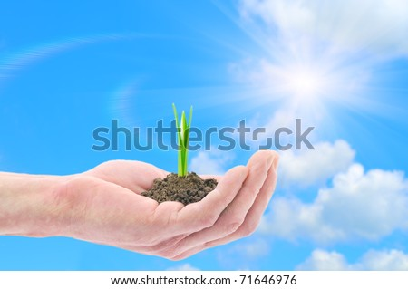 Hand holding green sprouts (snowdrop) against blue sky - stock photo