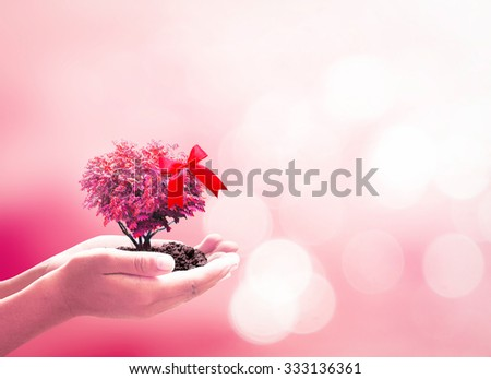 Hand Holding Growing Heart Tree with red ribbon Family Organ Donation Diabetes Day Marriage Patient Gift Support Healthy Protection World Health Care Trust Arbor Charity Life Cancer Love Idea Doctor  - stock photo