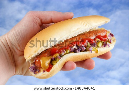 Hand holding homemade hotdog , blue sky in background - stock photo