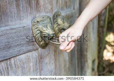 Hand holding old style lion's head knocker on wood door - stock photo