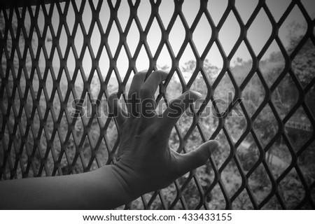 Hand holding on chain link fence ,black and white tone.  - stock photo