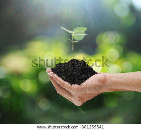Hand holding plant , concept - stock photo