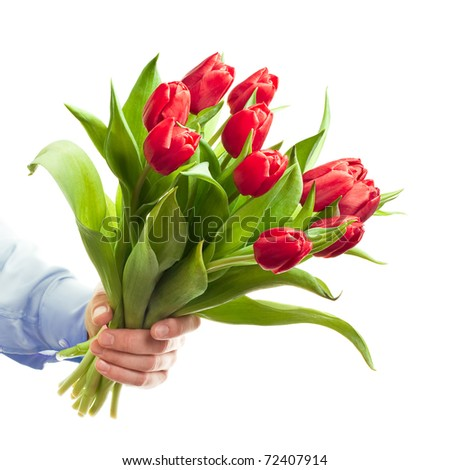 Hand holding red tulips - stock photo