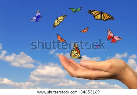 Hand Holding Released Butterflies Against a Sky Background - stock photo