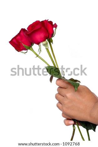 Hand holding roses