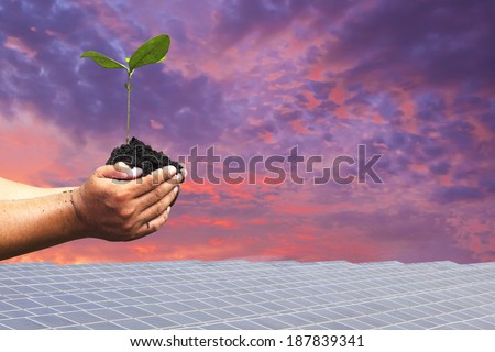 Hand holding seedling background solar cells. natural Energy - stock photo