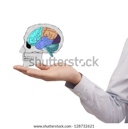 hand holding skull with colorful brain - stock photo