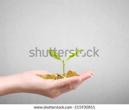 hand holding tree growing on golden coins ,saving money  - stock photo