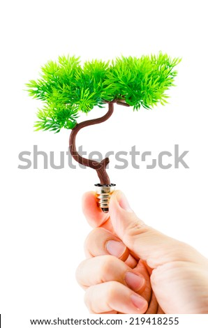 hand holding tree growing on light bulb isolated on white background ,eco concept,eco power - stock photo