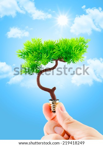 hand holding tree growing on light bulb with sun burst and light blue sky with cloud,eco concept,eco power - stock photo