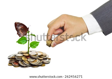 hand of a businessman giving coins to trees growing on golden coins with a butterfly - Business growth and wealth with csr concern - stock photo
