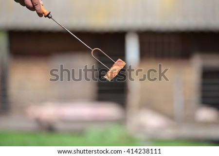 Hand of a person that keeps a fork with a slice of bacon for barbecue in the open air, with blurred coop with pigs behind - stock photo