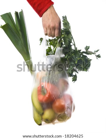 hand of a woman holding a grocery-bag with vegetables and fruits - stock photo