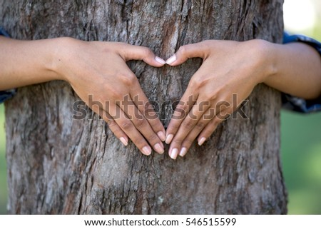 Hand of beautiful Woman hug a tree  in the park.
