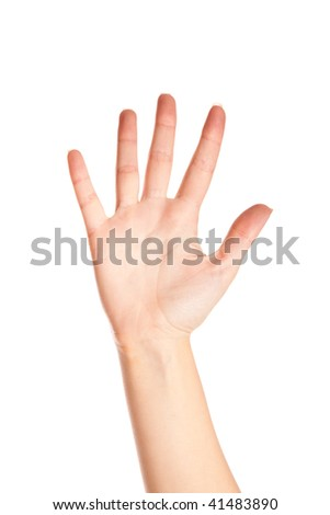 Hand of woman. Isolated on the white background