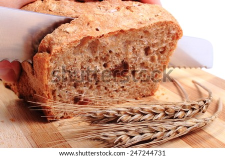 Hand of woman with knife slicing fresh baked wholemeal bread, ears of wheat lying on cutting board - stock photo