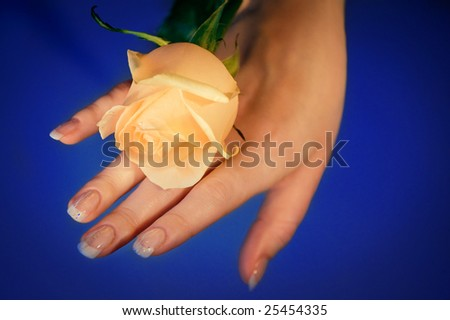 hand of young woman with rose - stock photo