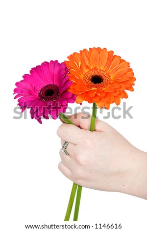 hand offering flowers