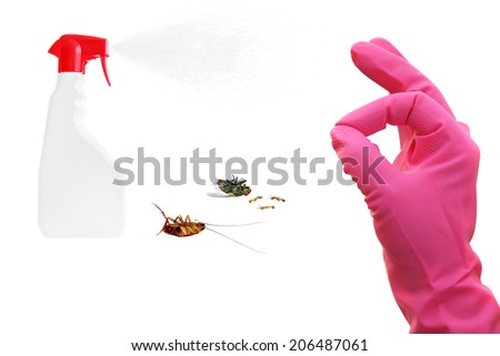 Hand OK sign, plastic sprayer with insecticide and dead insects isolated on white background. Pest control concept - stock photo