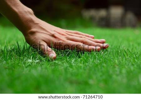 Hand on green lush grass - stock photo