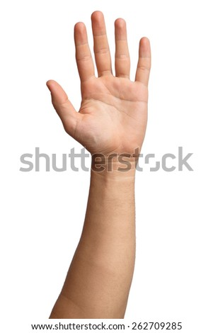 Hand on Isolated white background. Alpha. Five fingers. Palm. - stock photo