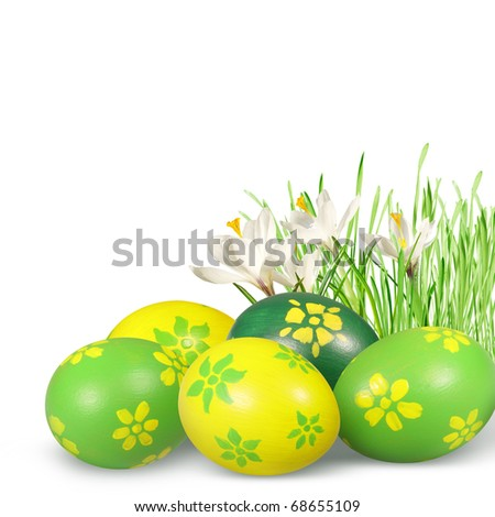 Hand painted Easter eggs and crocuses isolated on white background.