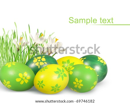 Hand painted Easter eggs and crocuses isolated on white background. - stock photo