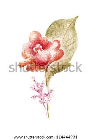 Hand Painted Flowers in Watercolor Paintings - stock photo