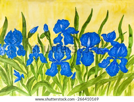 Hand painted picture, watercolours, flower bed with many blue irises on yellow background. - stock photo