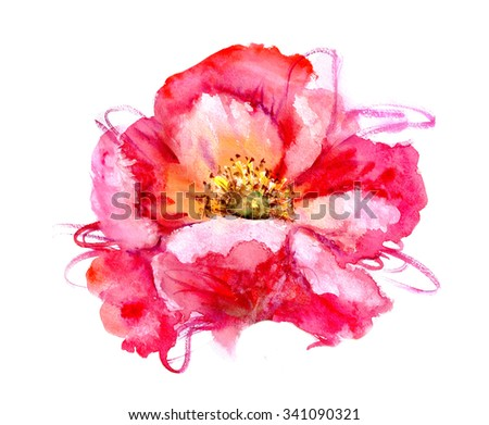 Hand Painted Watercolor Flower Poppy. Wet painting illustration - stock photo