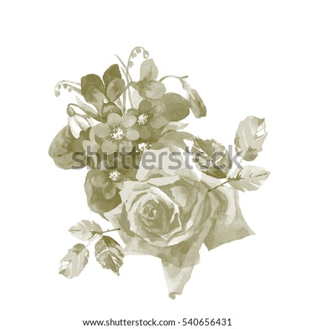 Hand Painting Grey Rose And Violet Flowers Watercolor On White Background For Greeting Cards