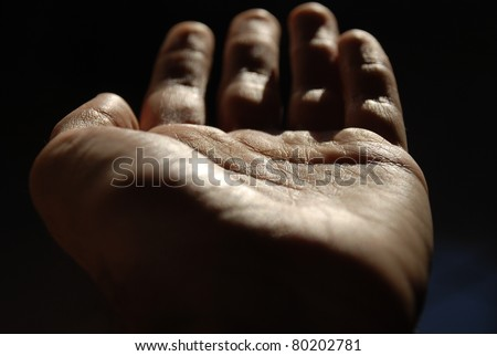 Hand palm - stock photo