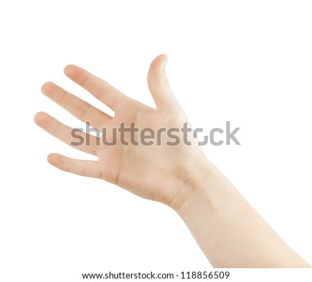hand (palm) isolated on white background - stock photo