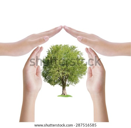 Hand protect tree , ecology concept