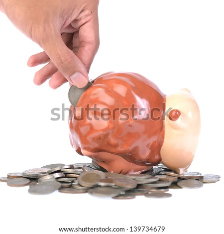Hand putting money in a piggy bank - stock photo