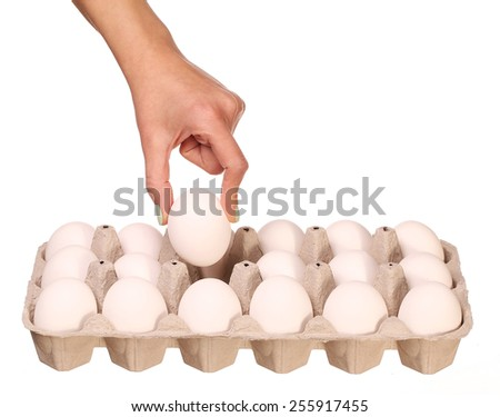 Hand selected Egg in egg box isolated on white - stock photo