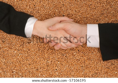 Hand shake as a symbol of signing of the sales agreement of wheat