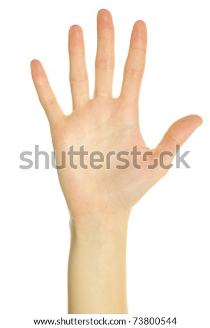 hand showing five fingers and the palm isolated on white - stock photo